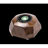 Кнопка вызова RS-65